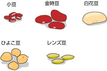 炭水化物の多い豆