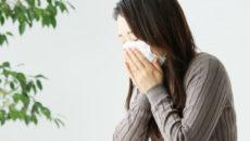 季節の変わり目に!風邪を予防してくれるハーブティー